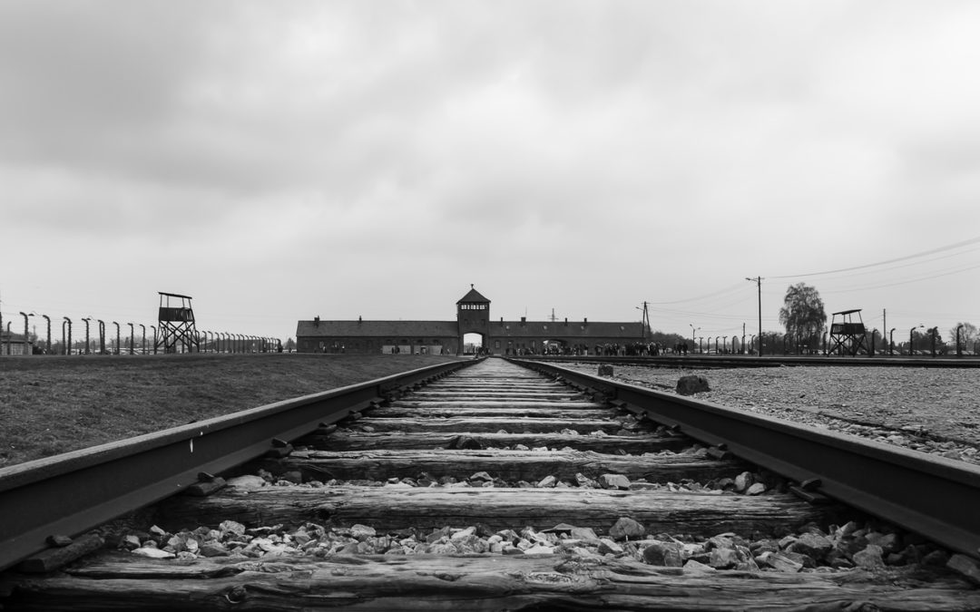 Anti Rhetoric Nothing New says Holocaust Professor-e-immigrate-news
