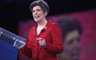 Ernst says U.S. immigration law should specifically bar those with sex crime convictions